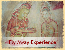Fly Away Experience